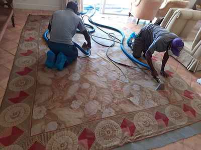 rug hand cleaning.jpeg