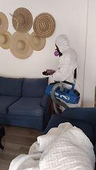 Covid sanitizing upholstery5.jpeg