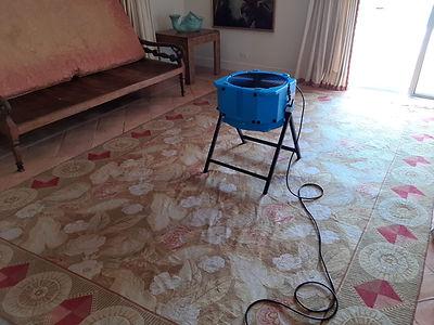 rug drying.jpeg