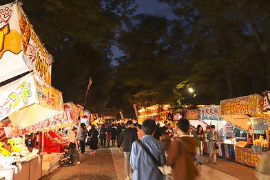 japan festival.jpeg