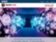 spider-net-net-.jpg