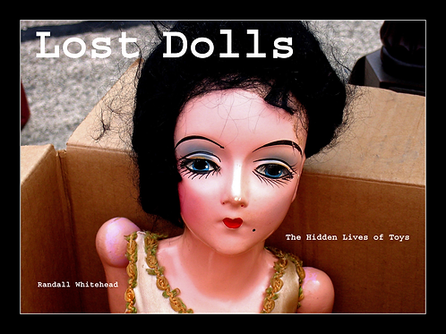 Lost Dolls The Hidden Lives of Toys