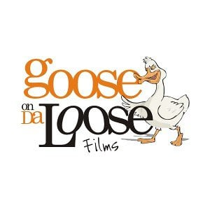 Goose on the loose  ICED Solutions