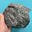 Thumbnail: Unique Collector Crystals