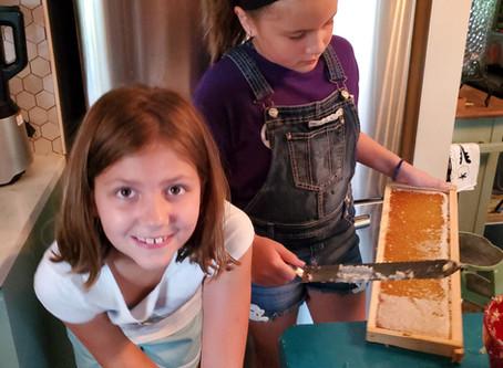 Summer Honey Harvest