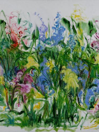 Paula Schiller. Garden Colligraphy I