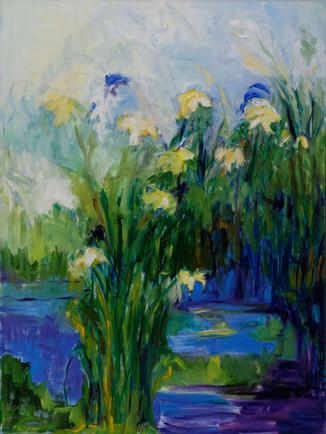 Paula Schiller. Daylilies