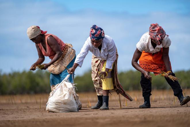 20190822_Mozambique_0347.jpg