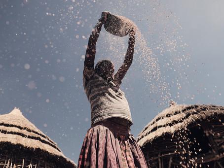 Life lessons of a Dry Season | Karamoja, Uganda