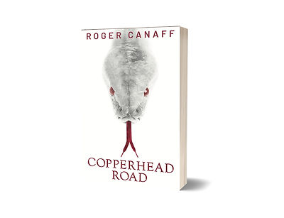 3D Copperhead Road Cover FINAL.jpg