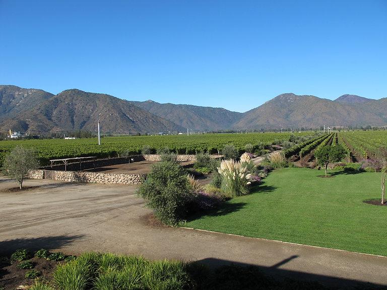 Emiliana wine estate