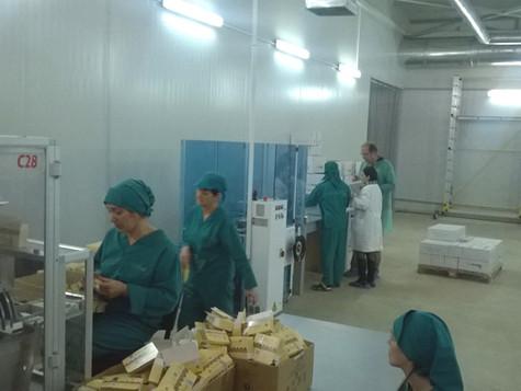 """კომპანია """"გეოპლანტმა""""  ISO 22000 სერტიფიკატი მიიღო"""