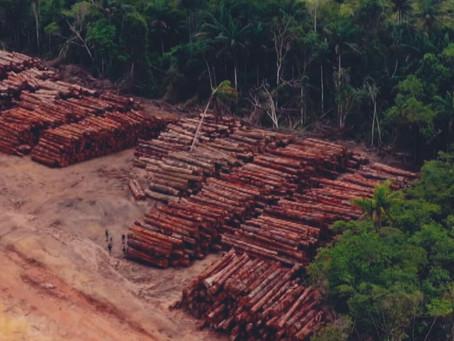 Oposição articula CPI do Meio Ambiente após nova interferência no Inpe