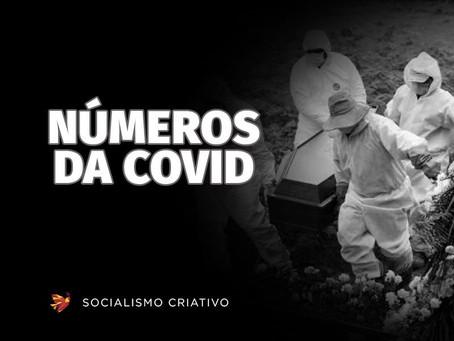 Brasil se aproxima de 543 mil mortes por Covid-19