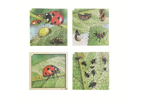 Ladybird Life Cycle Puzzle (86 pieces)