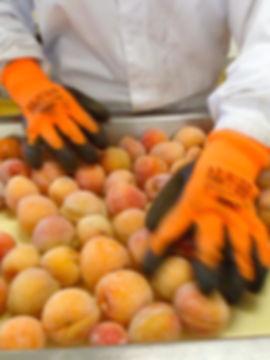 tri d'abricots congelés gélifruit