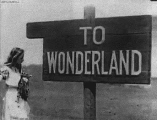 To Wonderland