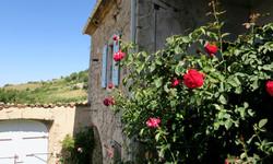 Gite Drôme Rimon • Maison fleurie