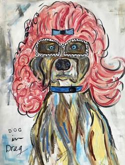 Dog in Drag