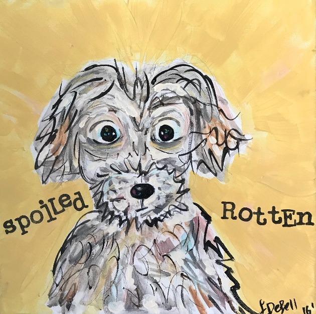 Spoiled Rotten Maltese