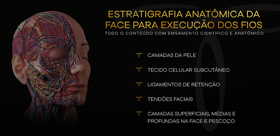 banner anatomia.png