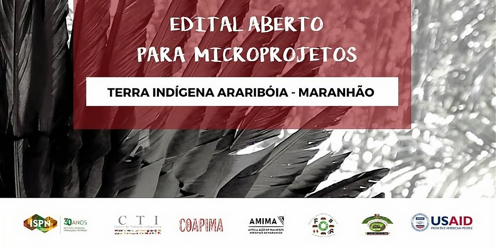 Edital de Microprojetos para a Terra Indígena Araribóia (Maranhão)
