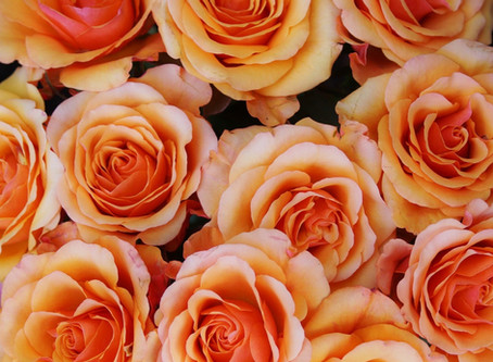 Create an Easy Tablescape with Store Bought Roses