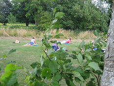 Yoga Watermeadows July 2017 010.JPG