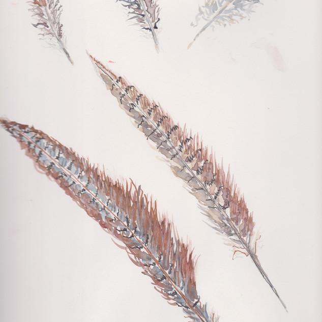 ART14 (2).jpg