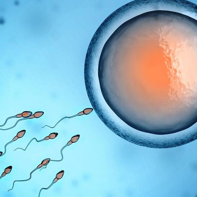 New Scientist: Male infertility crisis?