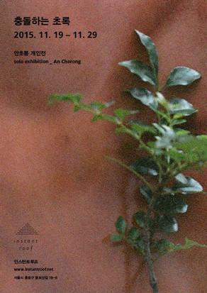 show 안초롱_충돌하는 초록 2015.11.19-11.29