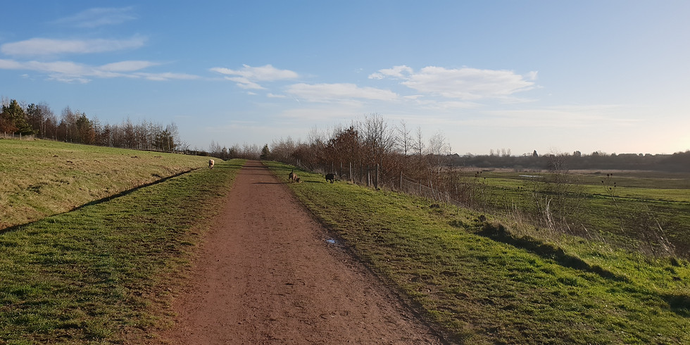 Brodsworth pit top social walk