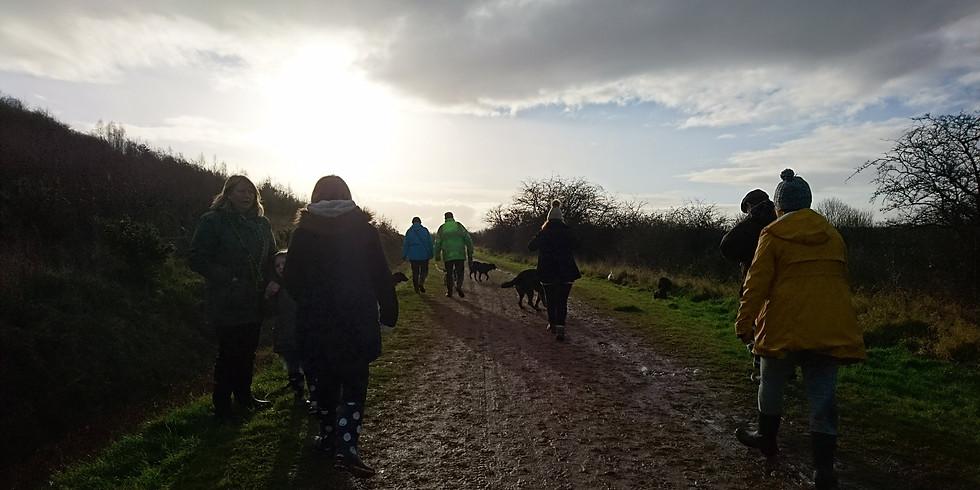 Brodsworth Country Park Social Walk