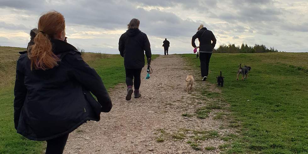 Edlington pit top social walk