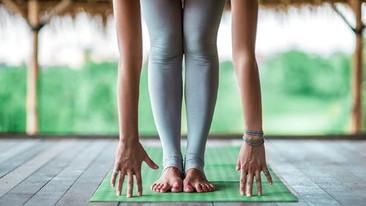 13 Yoga Wellness Retreats for Every Kind of Yogi