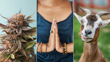 9 Crazy Types of Yoga You Never Knew Existed