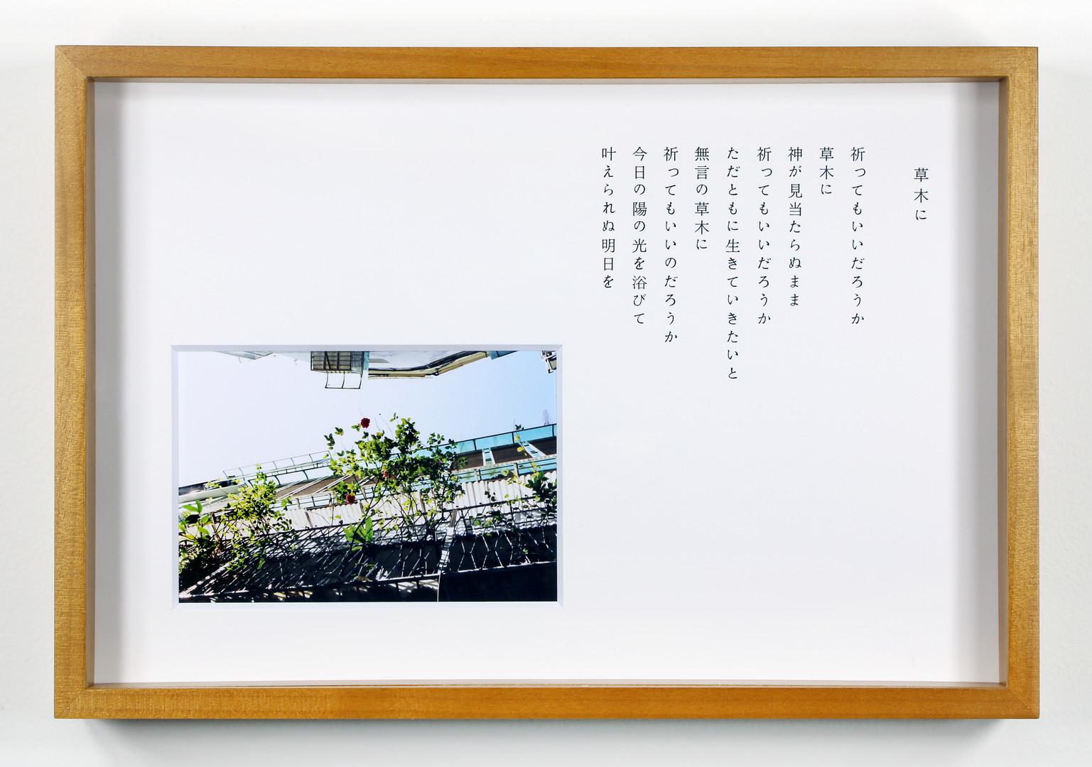 川島 小鳥 + 谷川 俊太郎 / Kotori Kawashima + Shuntaro Tanikawa