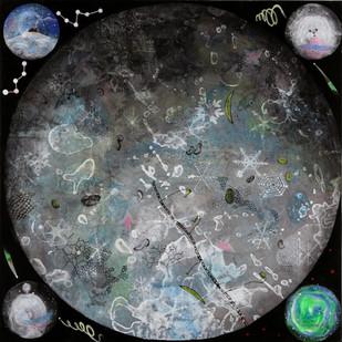 micro cosmos' 5