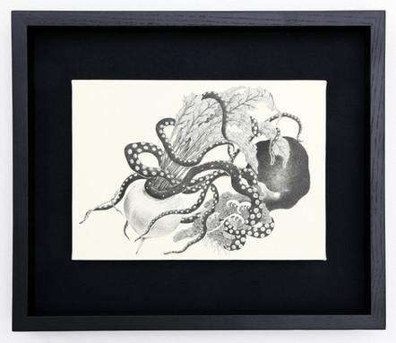 Octopus stealing taro