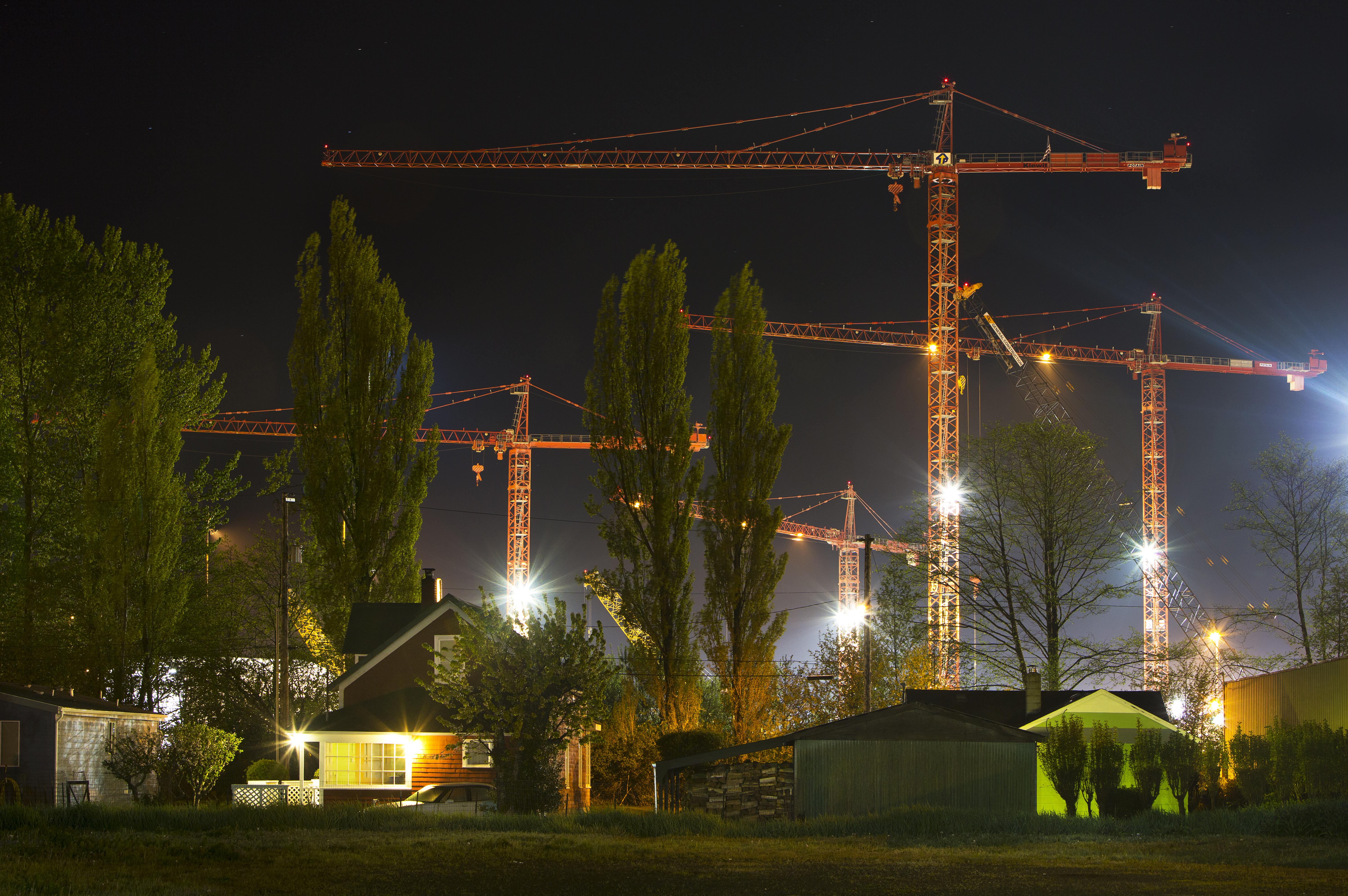 After Dark - Cranes