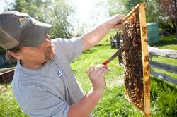 Beekeeper - Beekeeping