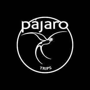 nuevo logo pajarotrips.jpg