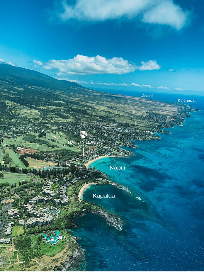 Napili from Above with Names.jpg