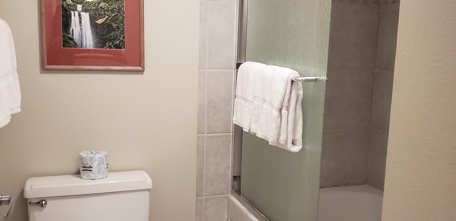 Tub/Shower Before