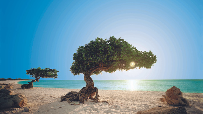 ABC - the Dutch Caribbean