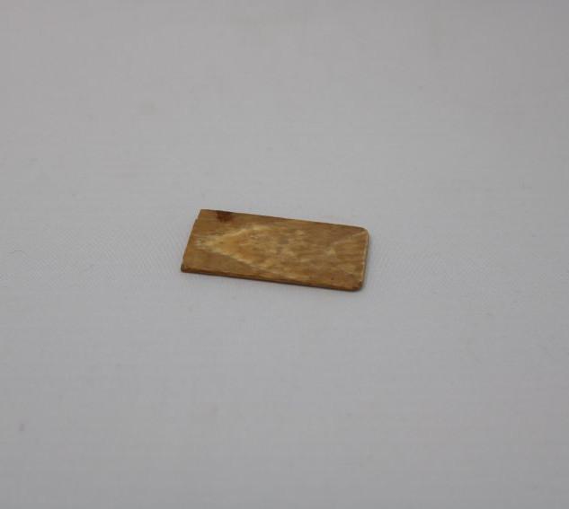 Ivory (?) fragment.