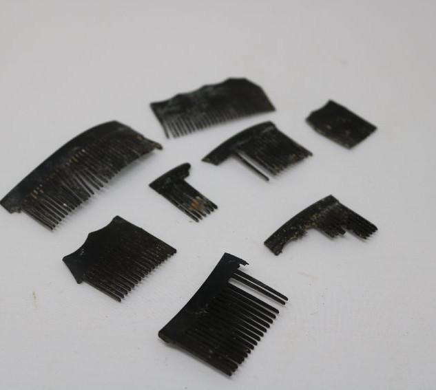 Comb fragments.