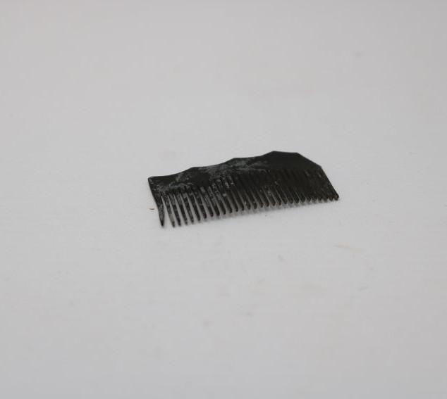 Comb fragment.