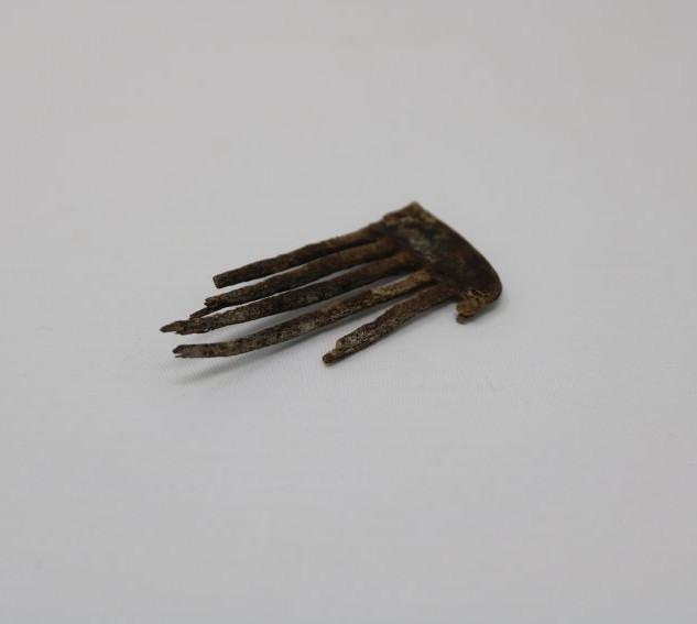 Comb fragment