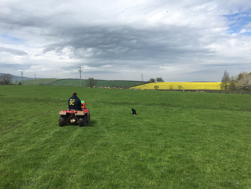 Beautiful farm views